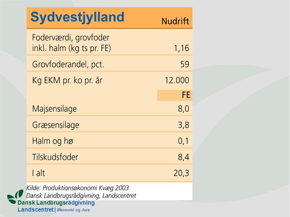Dansk Landbrugsrådgivning Landscentret | Økonomi og Jura Sydvestjylland