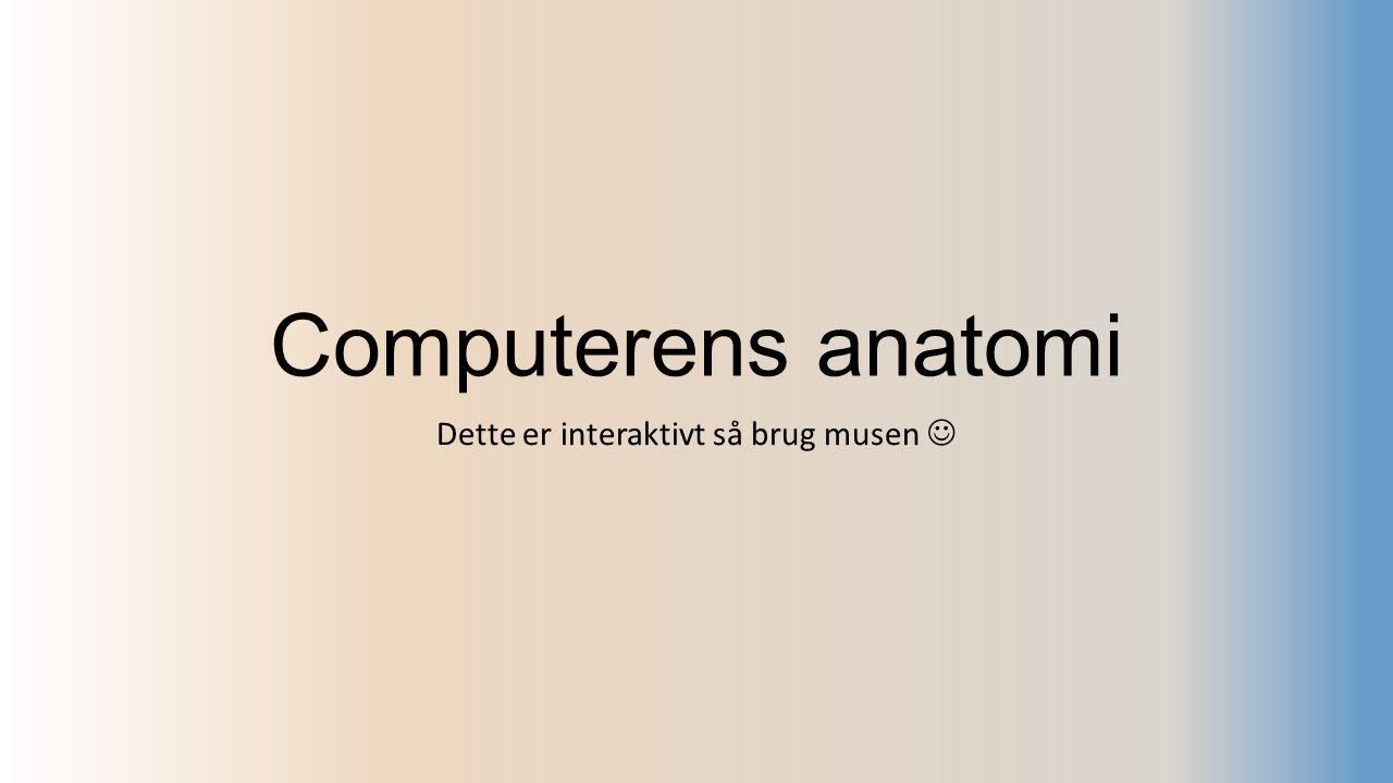 Computerens anatomi Dette er interaktivt så brug musen