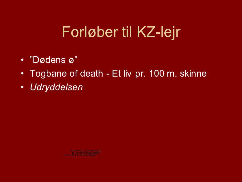Forløber til KZ-lejr Dødens ø Togbane of death - Et liv pr. 100 m. skinne Udryddelsen