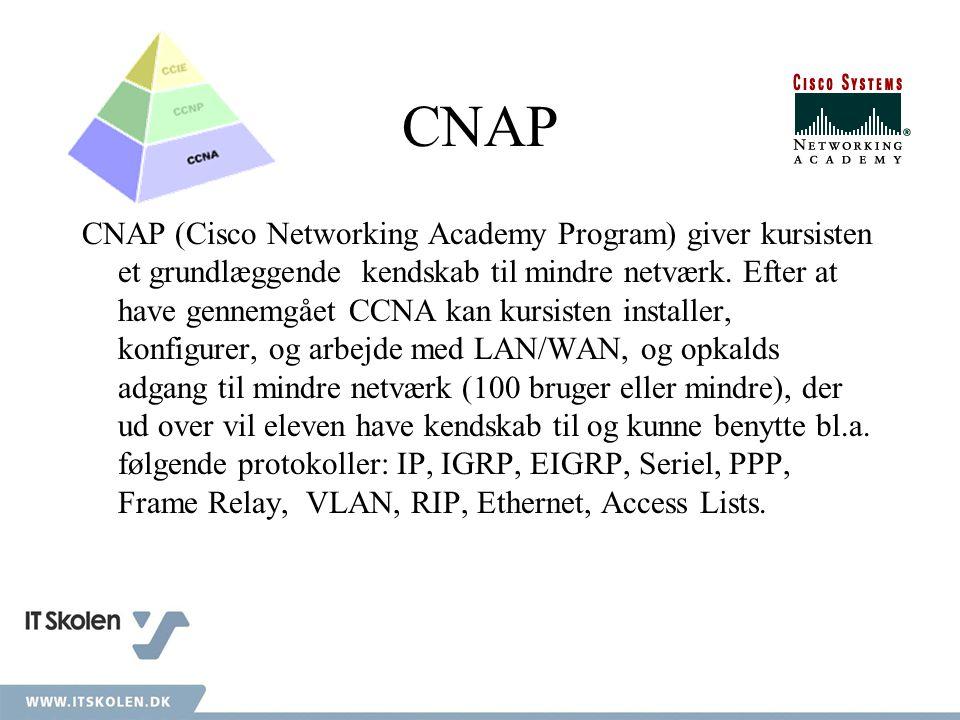 CNAP (Cisco Networking Academy Program) giver kursisten et grundlæggende kendskab til mindre netværk.