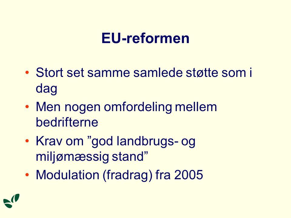EU-reformen Stort set samme samlede støtte som i dag Men nogen omfordeling mellem bedrifterne Krav om god landbrugs- og miljømæssig stand Modulation (fradrag) fra 2005