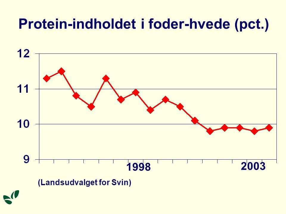 1998 2003 (Landsudvalget for Svin) Protein-indholdet i foder-hvede (pct.)