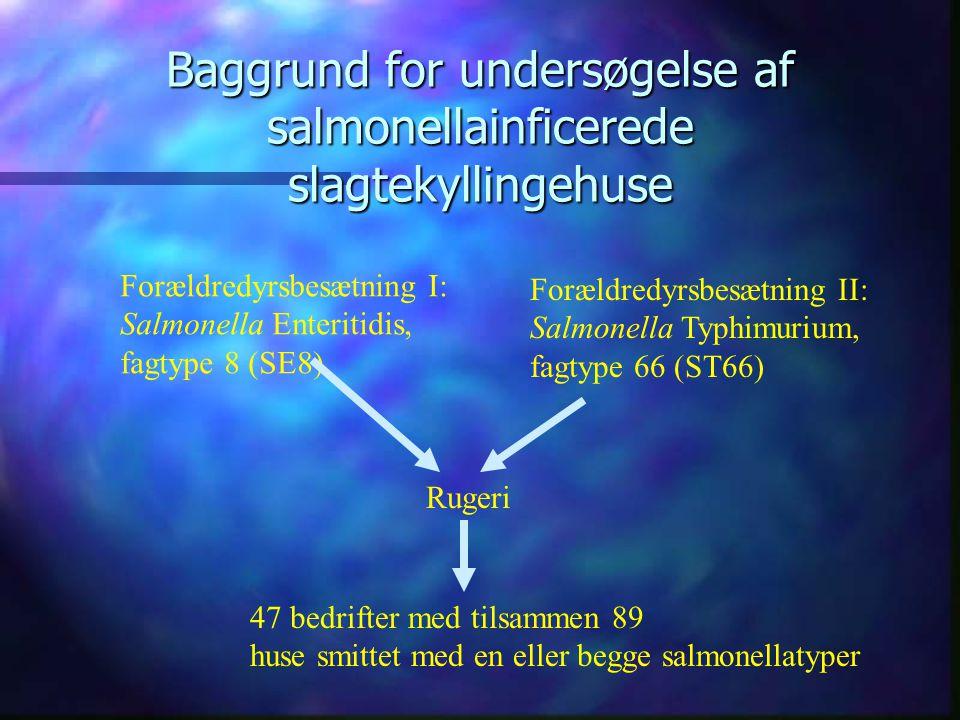 Nye projekter - Slagtekyllinger Undersøgelse af Salmonella Enteritidis og Salmonella Typhimurium i slagtekyllingehuse Rengørings- og desinfektionsprojekter under Salmonella- handlingsplanen for Fjerkræ Delprojekt I: Udvikling af mikrobiologiske monitorerings- modeller i slagtekyllingestalde: Vurdering af rengørings- og desinfektionsprocedurers betydning for persistens af Salmonella.