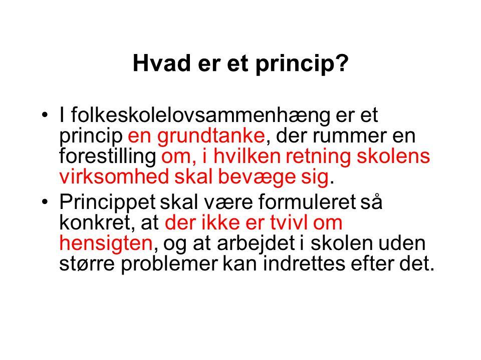 Hvad er et princip.