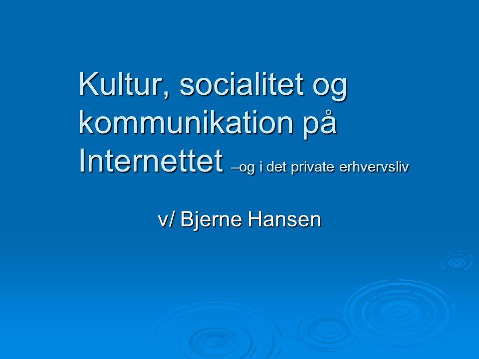 Kultur, socialitet og kommunikation på Internettet –og i det private erhvervsliv v/ Bjerne Hansen