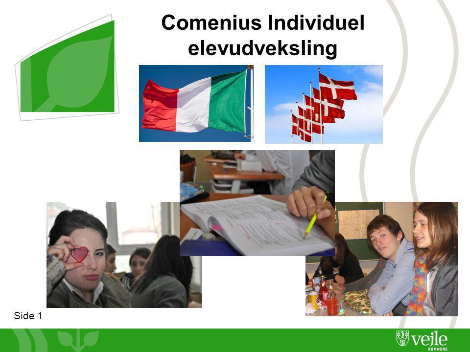 Side 1 Comenius Individuel elevudveksling