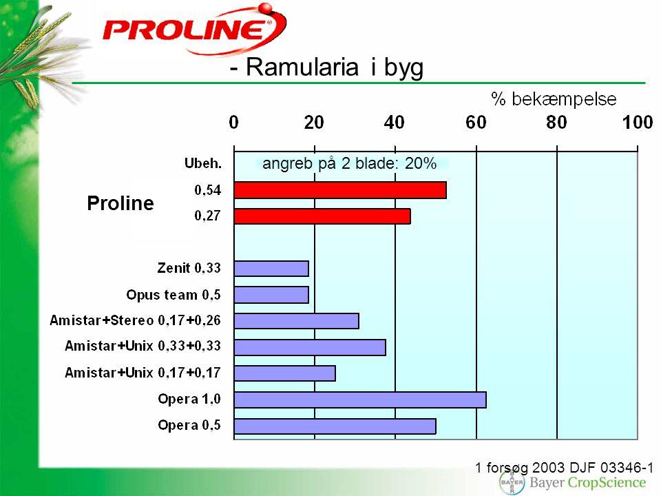 angreb på 2 blade: 20% 1 forsøg 2003 DJF 03346-1 Proline - Ramularia i byg