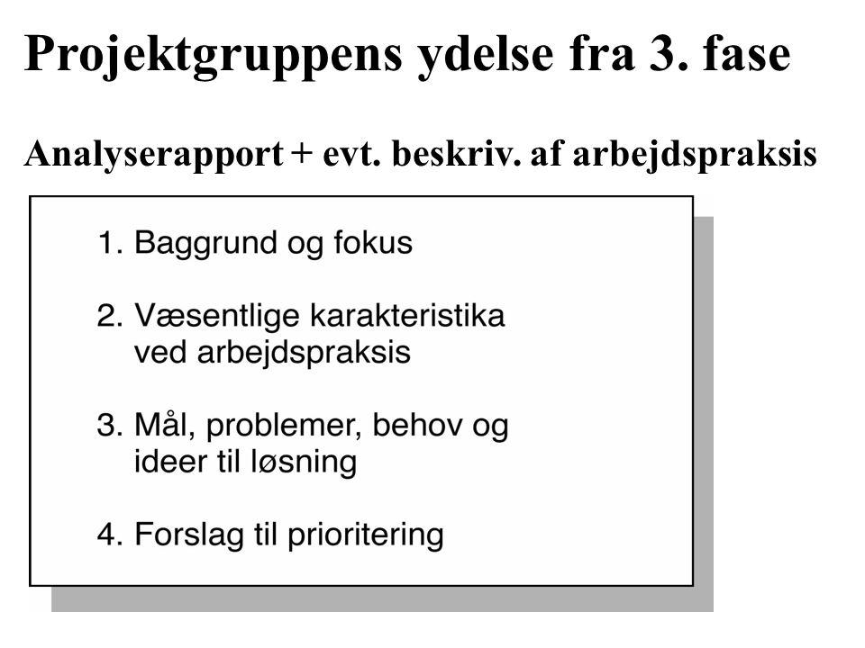 Projektgruppens ydelse fra 3. fase Analyserapport + evt. beskriv. af arbejdspraksis
