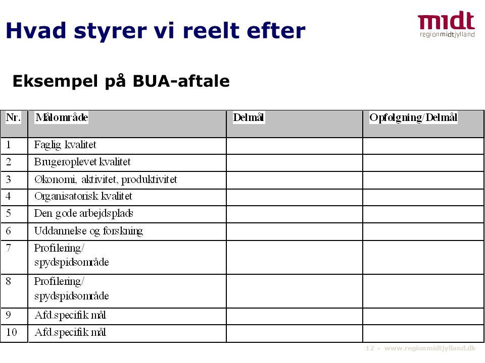 12 ▪ www.regionmidtjylland.dk Eksempel på BUA-aftale Hvad styrer vi reelt efter