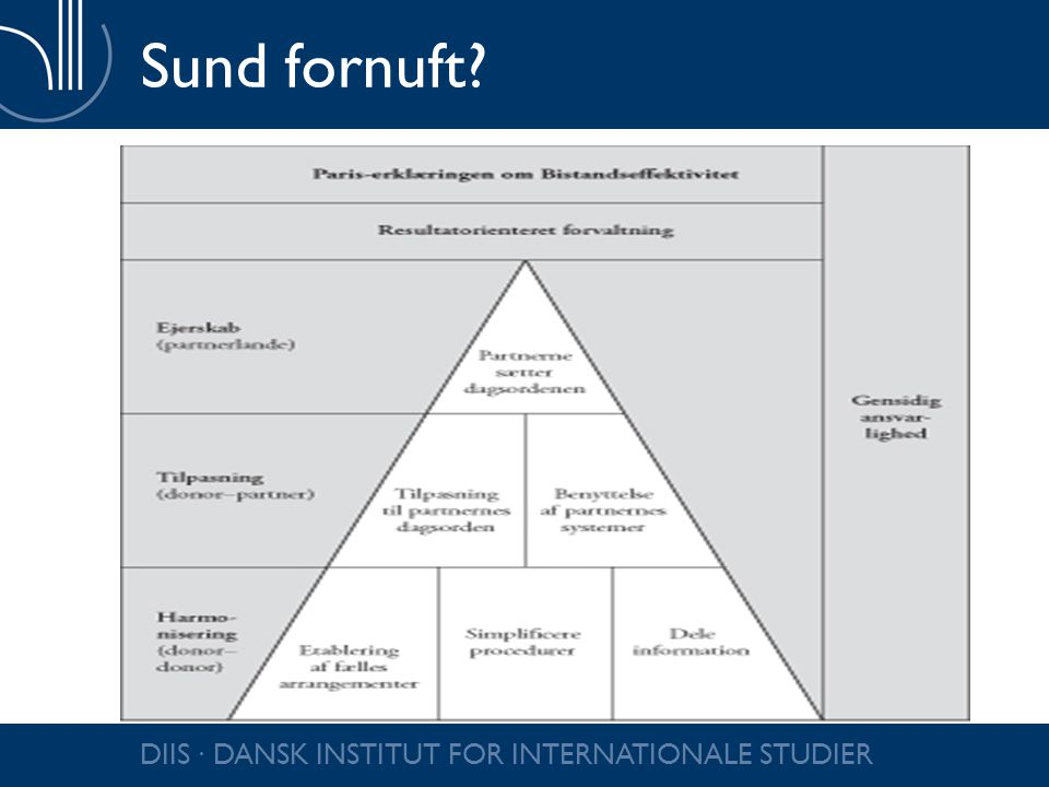 DIIS ∙ DANSK INSTITUT FOR INTERNATIONALE STUDIER Sund fornuft