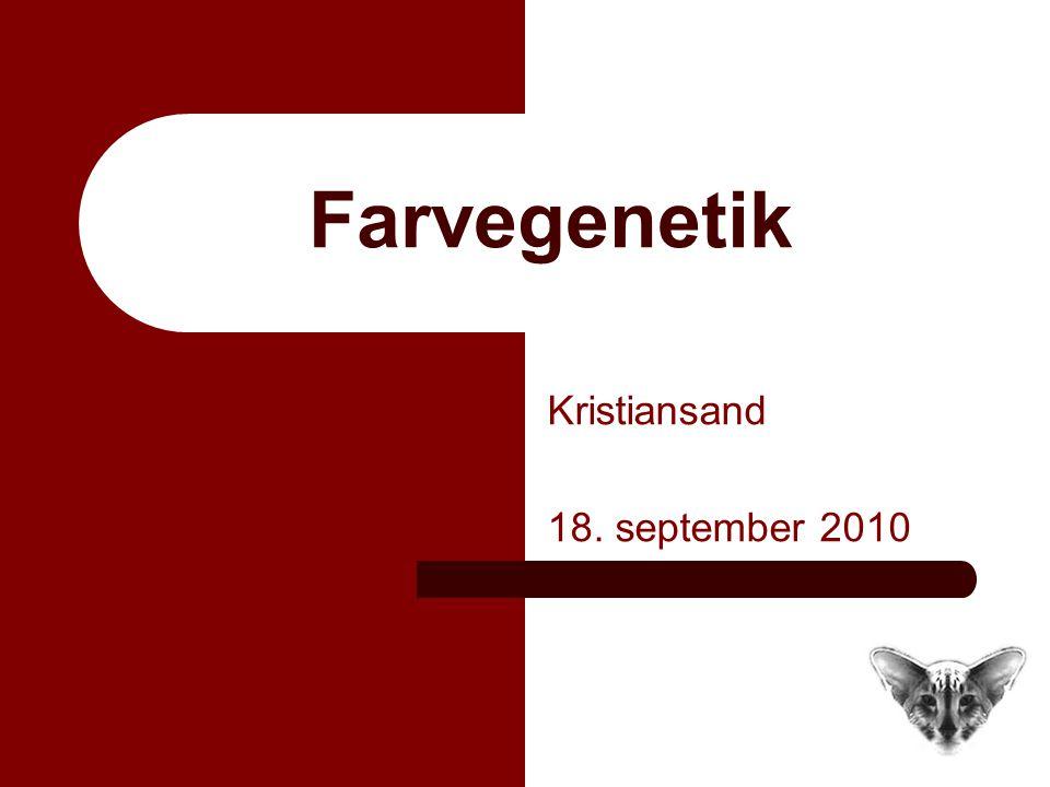 Farvegenetik Kristiansand 18. september 2010