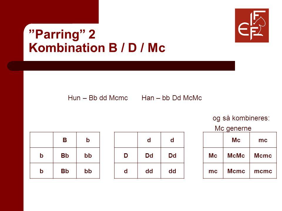 Parring 2 Kombination B / D / Mc Hun – Bb dd Mcmc Han – bb Dd McMc og så kombineres: Mc generne Bb bBbbb bBbbb dd DDd ddd Mcmc McMcMcMcmc mcMcmcmcmc