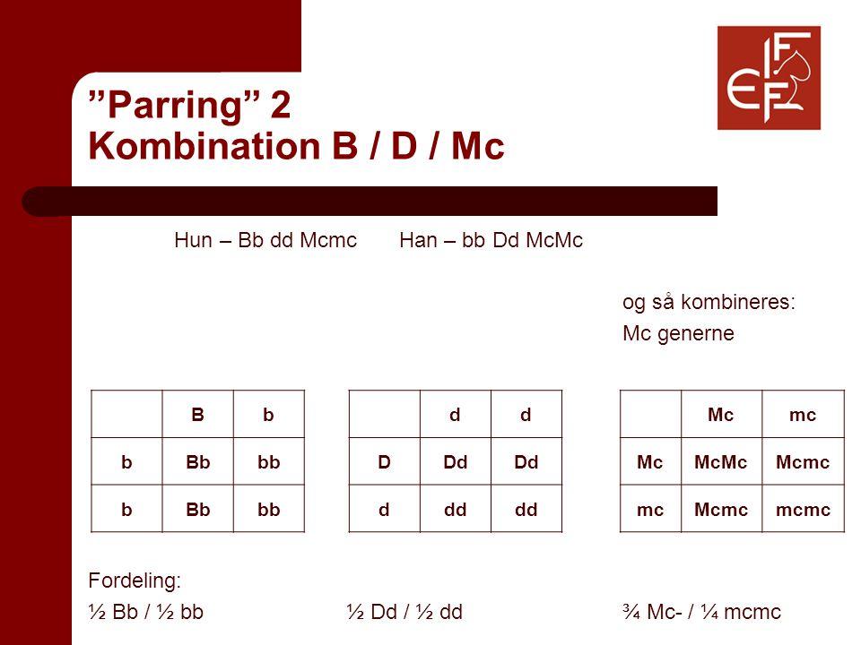 Parring 2 Kombination B / D / Mc Hun – Bb dd Mcmc Han – bb Dd McMc og så kombineres: Mc generne Fordeling: ½ Bb / ½ bb½ Dd / ½ dd ¾ Mc- / ¼ mcmc Bb bBbbb bBbbb dd DDd ddd Mcmc McMcMcMcmc mcMcmcmcmc
