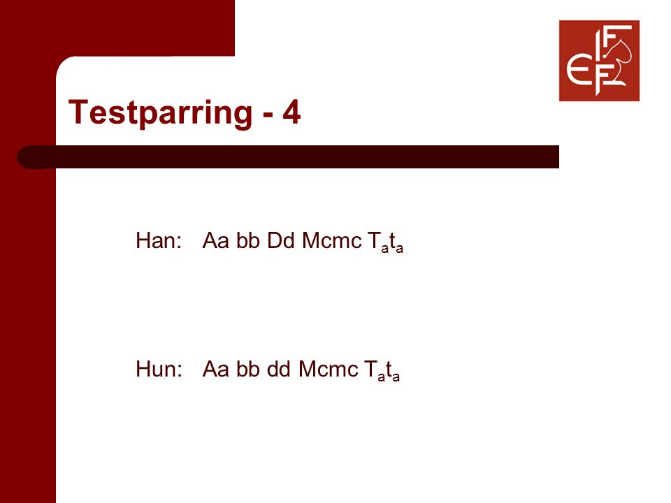 Testparring - 4 Han: Aa bb Dd Mcmc T a t a Hun: Aa bb dd Mcmc T a t a