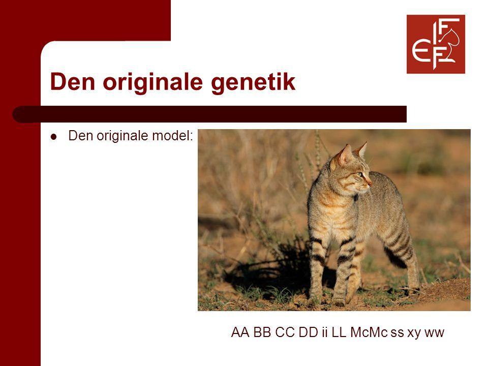 Den originale genetik Den originale model: AA BB CC DD ii LL McMc ss xy ww