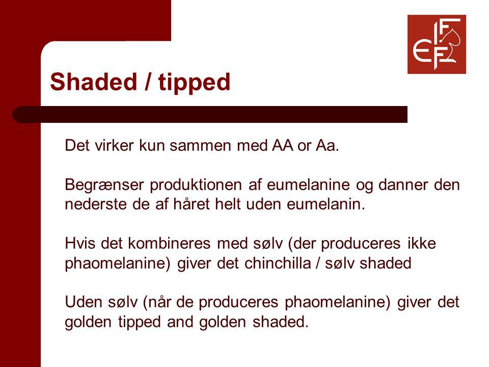 Shaded / tipped Det virker kun sammen med AA or Aa.