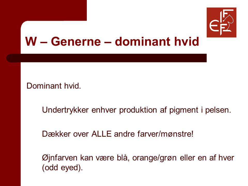 W – Generne – dominant hvid Dominant hvid. Undertrykker enhver produktion af pigment i pelsen.