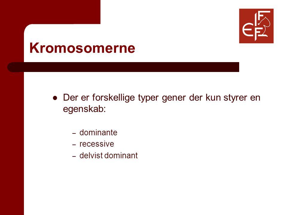 Kromosomerne Der er forskellige typer gener der kun styrer en egenskab: – dominante – recessive – delvist dominant