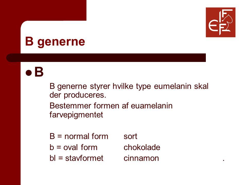 B generne B B generne styrer hvilke type eumelanin skal der produceres.