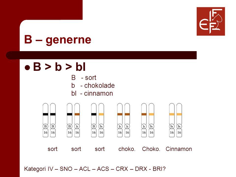 B – generne B > b > bl B - sort b - chokolade bl - cinnamon sortsortsortchoko.Choko.Cinnamon Kategori IV – SNO – ACL – ACS – CRX – DRX - BRI