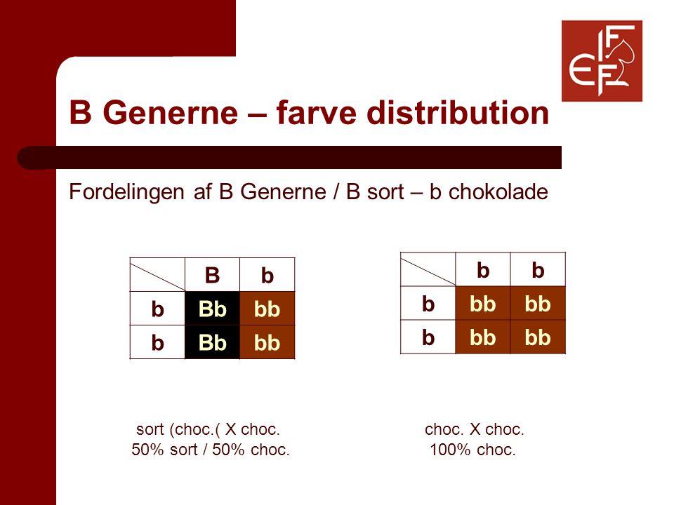 B Generne – farve distribution Fordelingen af B Generne / B sort – b chokolade sort (choc.( X choc.