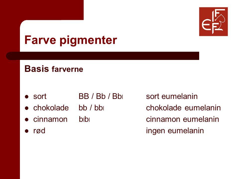 Farve pigmenter Basis farverne sort BB / Bb / Bb l sort eumelanin chokolade bb / bb l chokolade eumelanin cinnamon b l b l cinnamon eumelanin rød ingen eumelanin