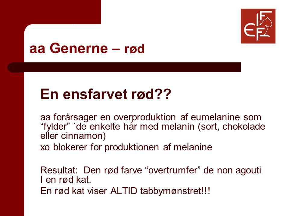 aa Generne – rød En ensfarvet rød .