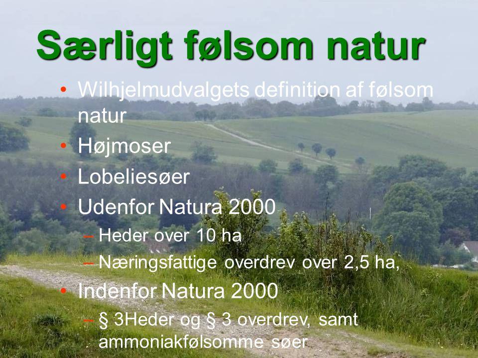 Særligt følsom natur Wilhjelmudvalgets definition af følsom natur Højmoser Lobeliesøer Udenfor Natura 2000 –Heder over 10 ha –Næringsfattige overdrev over 2,5 ha, Indenfor Natura 2000 –§ 3Heder og § 3 overdrev, samt ammoniakfølsomme søer