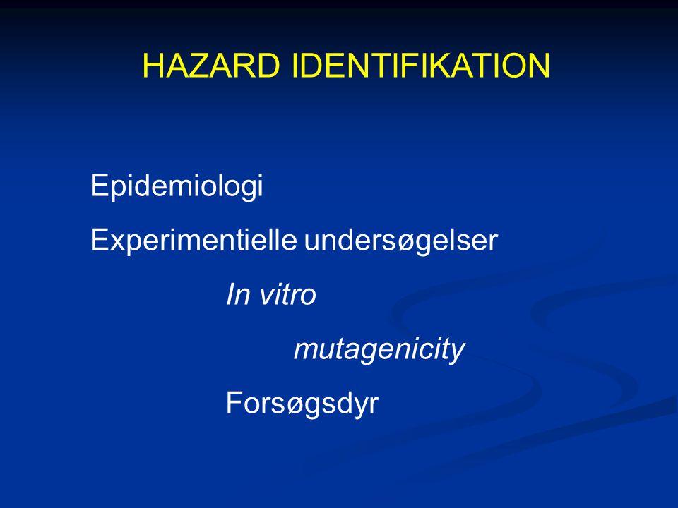 HAZARD IDENTIFIKATION Epidemiologi Experimentielle undersøgelser In vitro mutagenicity Forsøgsdyr