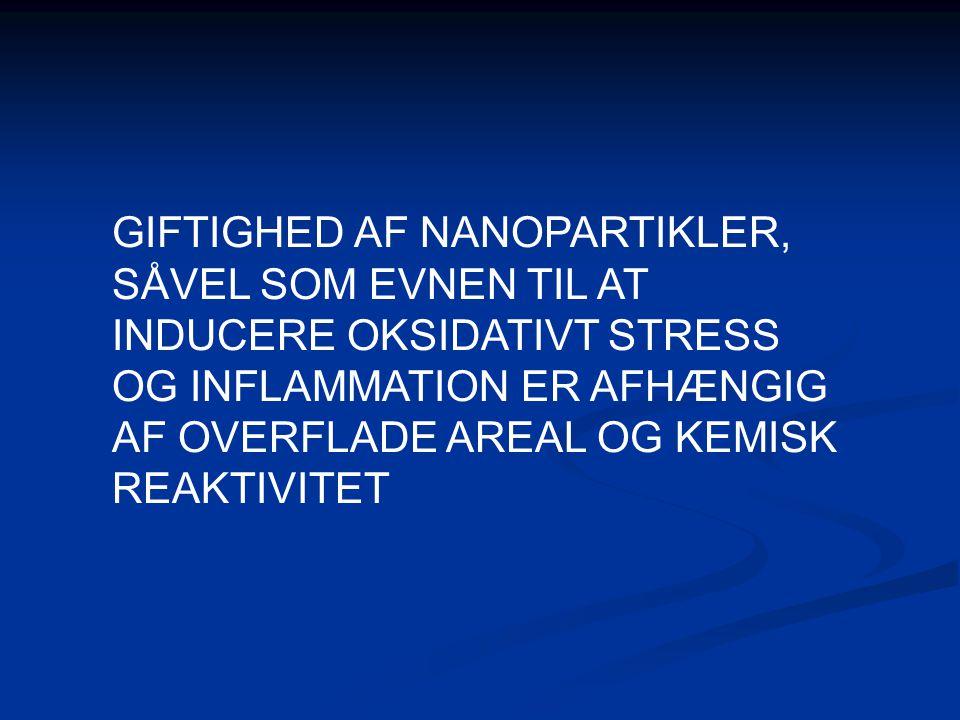 GIFTIGHED AF NANOPARTIKLER, SÅVEL SOM EVNEN TIL AT INDUCERE OKSIDATIVT STRESS OG INFLAMMATION ER AFHÆNGIG AF OVERFLADE AREAL OG KEMISK REAKTIVITET