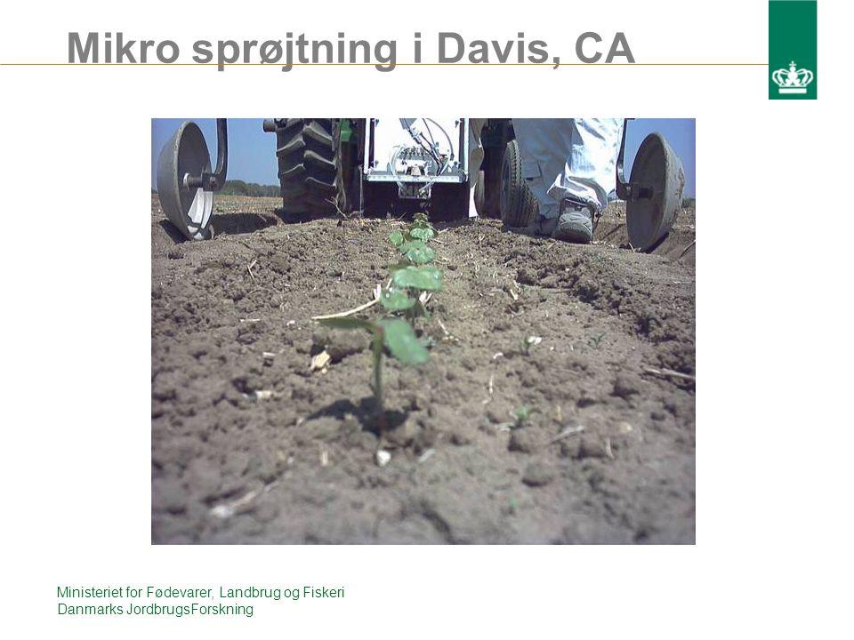 Mikro sprøjtning i Davis, CA Ministeriet for Fødevarer, Landbrug og Fiskeri Danmarks JordbrugsForskning