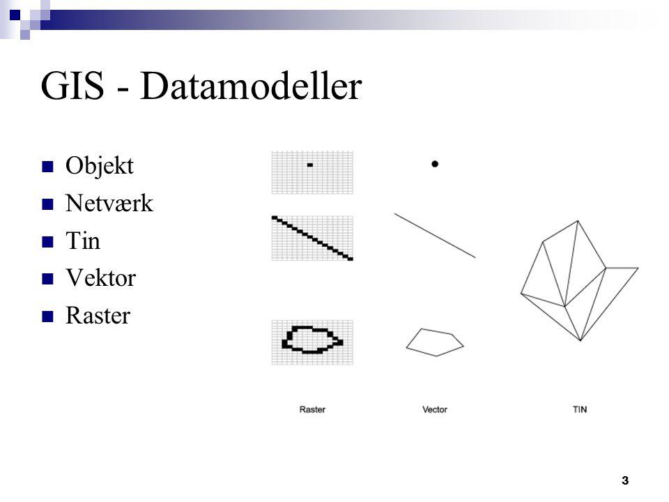 3 GIS - Datamodeller Objekt Netværk Tin Vektor Raster