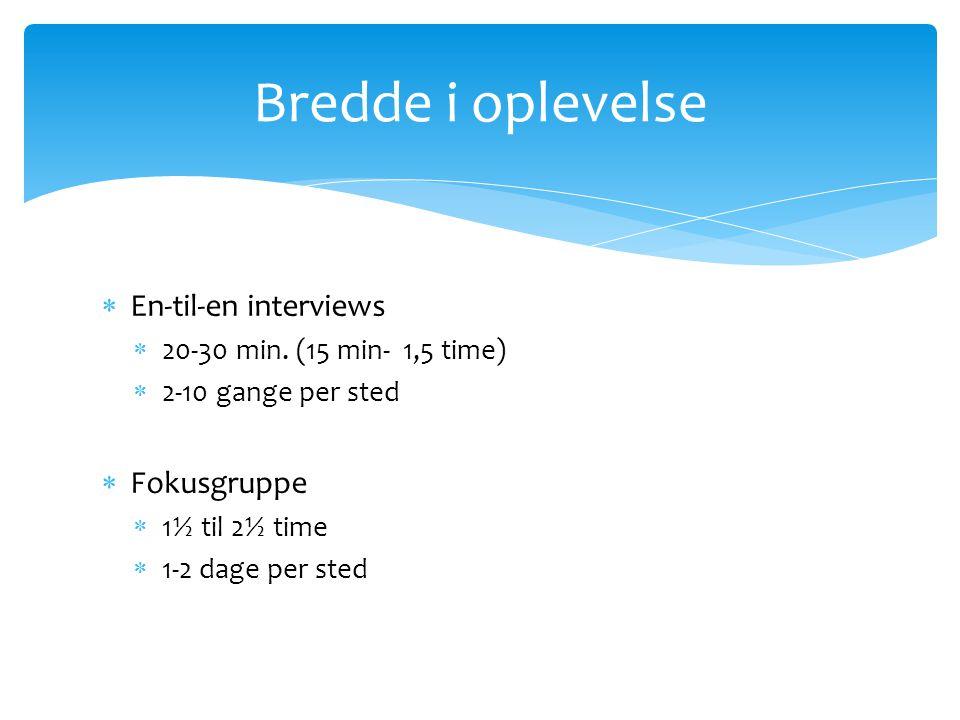 En-til-en interviews  20-30 min.
