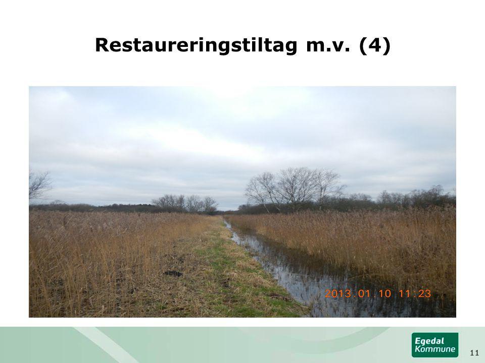 Restaureringstiltag m.v. (4) 11