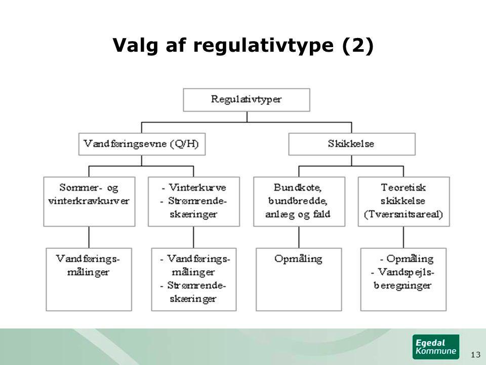 Valg af regulativtype (2) 13