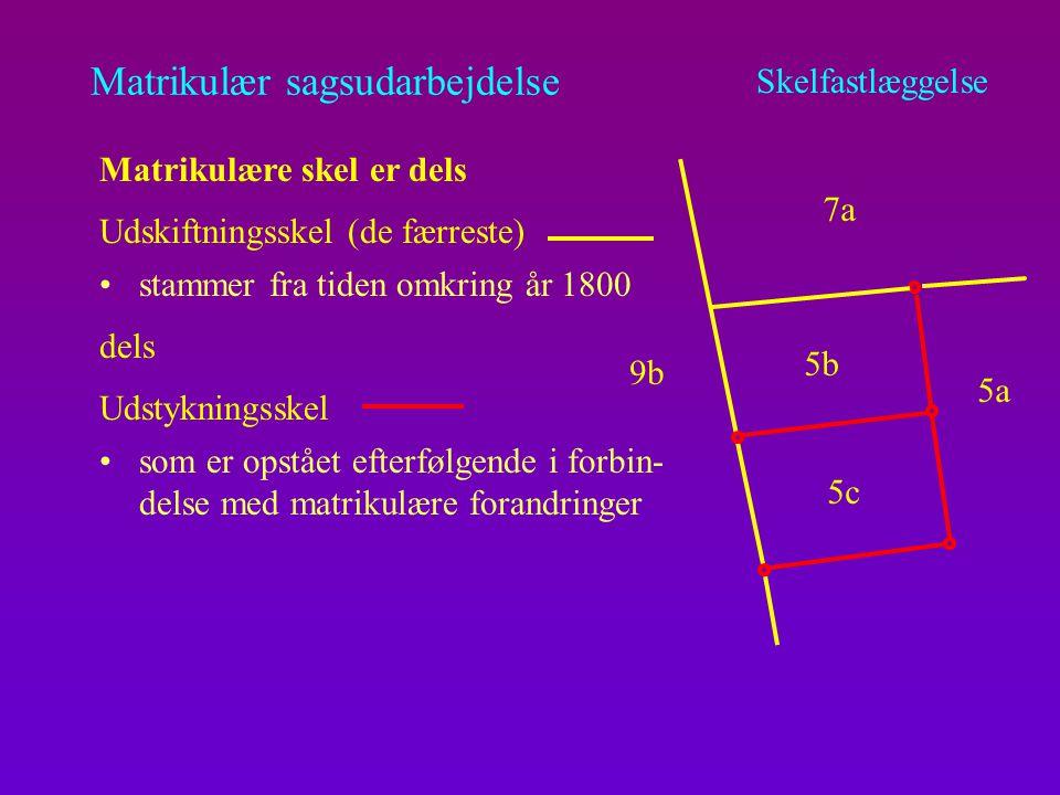 Matrikulær sagsudarbejdelse enten systemkoordinater eller efter digitalisering af målebladet Skelfastlæggelse Duller på det digitale matrikelkort de har altså stor nøjagtighed Skelpunkter, der er markeret med dulle (kredse), er indlagt i kortet på grundlag af koordinater der kan udmærket være måloplysninger til disse punkter (som altså bare ikke har været anvendt ved konverteringen) Nøjagtigheden i disse punkter varierer og kan være ringe Punkter uden kredse er indlagt på grundlag af det tidligere analoge kort i forhold til kredsede punkter.