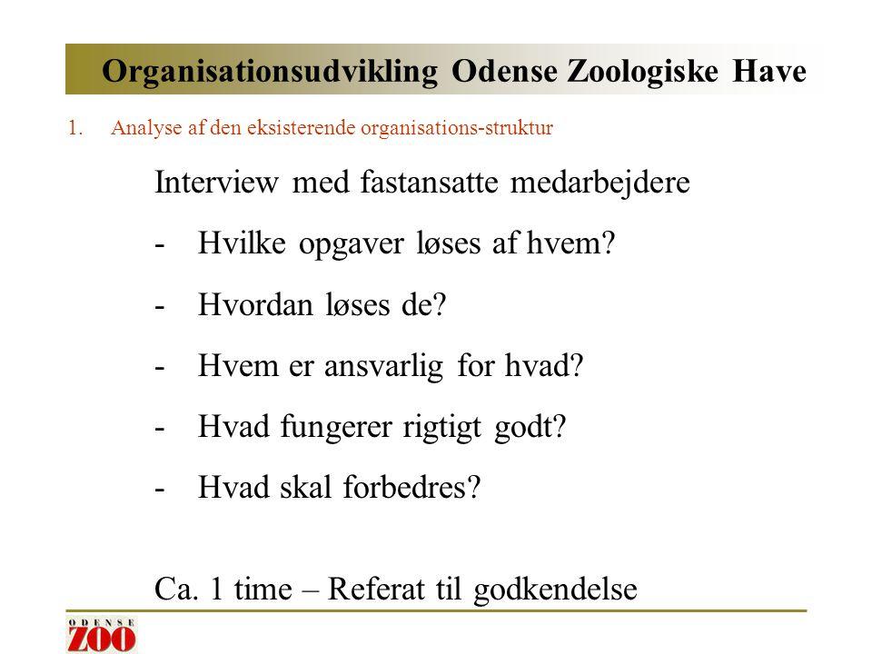 Organisationsudvikling Odense Zoologiske Have 1.Analyse af den eksisterende organisations-struktur Interview med fastansatte medarbejdere -Hvilke opgaver løses af hvem.