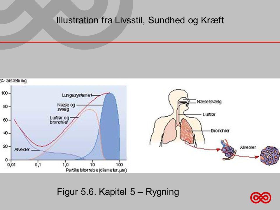 Illustration fra Livsstil, Sundhed og Kræft Figur 5.6. Kapitel 5 – Rygning