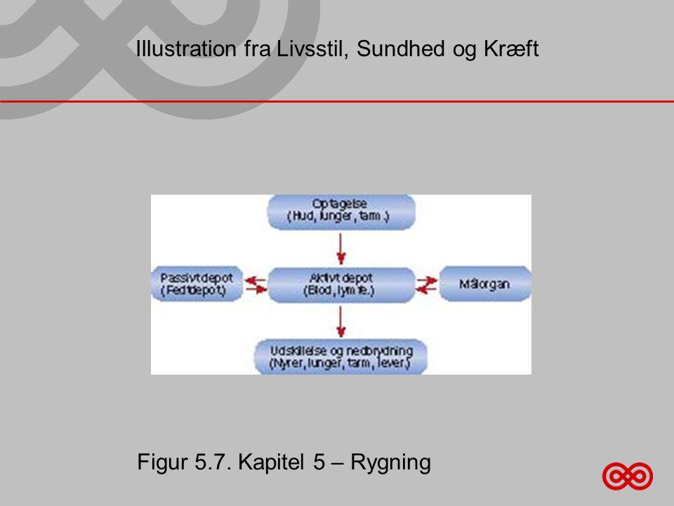 Illustration fra Livsstil, Sundhed og Kræft Figur 5.7. Kapitel 5 – Rygning