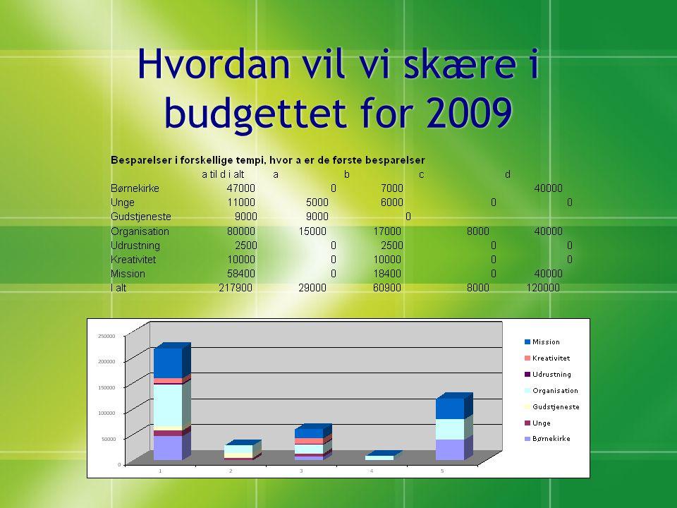Hvordan vil vi skære i budgettet for 2009