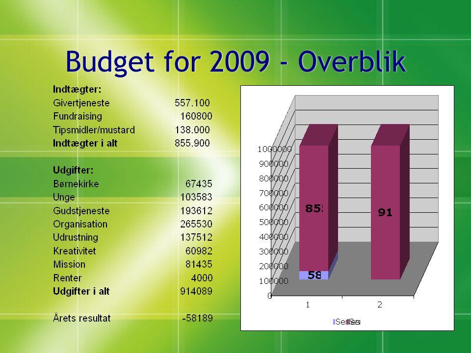 Budget for 2009 - Overblik