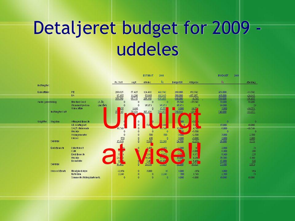 Detaljeret budget for 2009 - uddeles Umuligt at vise!!
