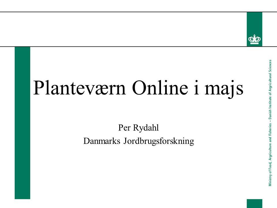 Planteværn Online i majs Per Rydahl Danmarks Jordbrugsforskning