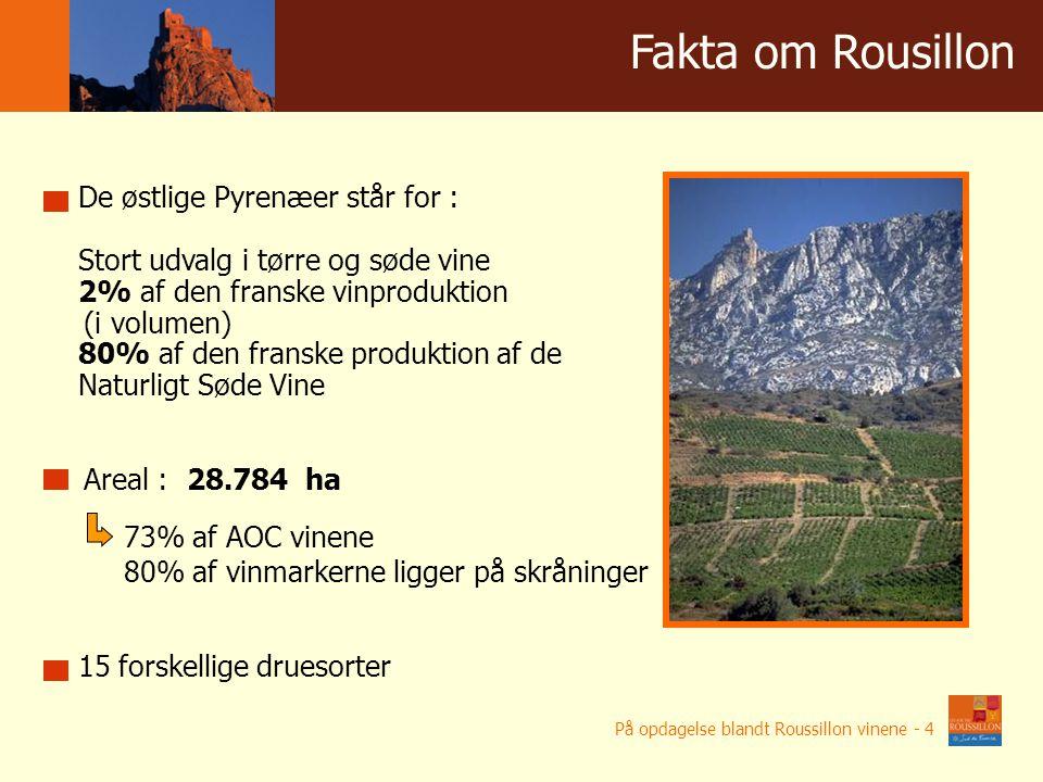 De østlige Pyrenæer står for : Stort udvalg i tørre og søde vine 2% af den franske vinproduktion (i volumen) 80% af den franske produktion af de Naturligt Søde Vine Areal : 28.784 ha 15 forskellige druesorter 73% af AOC vinene 80% af vinmarkerne ligger på skråninger Winnice w liczbach Fakta om Rousillon På opdagelse blandt Roussillon vinene - 4
