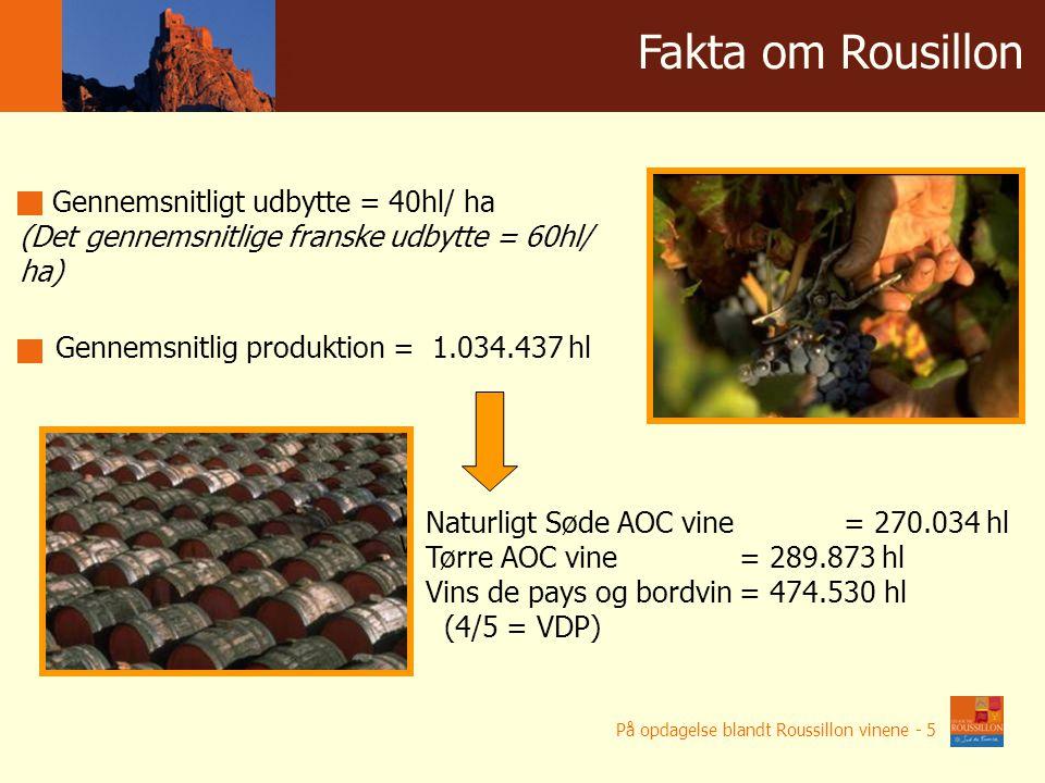 Winnice w liczbach Gennemsnitligt udbytte = 40hl/ ha (Det gennemsnitlige franske udbytte = 60hl/ ha) Gennemsnitlig produktion = 1.034.437 hl Naturligt Søde AOC vine = 270.034 hl Tørre AOC vine = 289.873 hl Vins de pays og bordvin= 474.530 hl (4/5 = VDP) Fakta om Rousillon På opdagelse blandt Roussillon vinene - 5