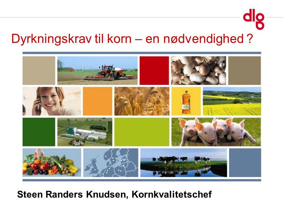 Steen Randers Knudsen, Kornkvalitetschef Dyrkningskrav til korn – en nødvendighed