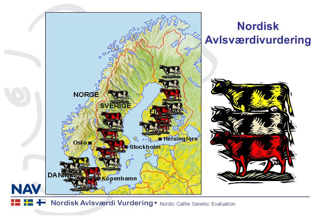 Nordisk Avlsværdi Vurdering Nordic Cattle Genetic Evaluation Nordisk Avlsværdivurdering