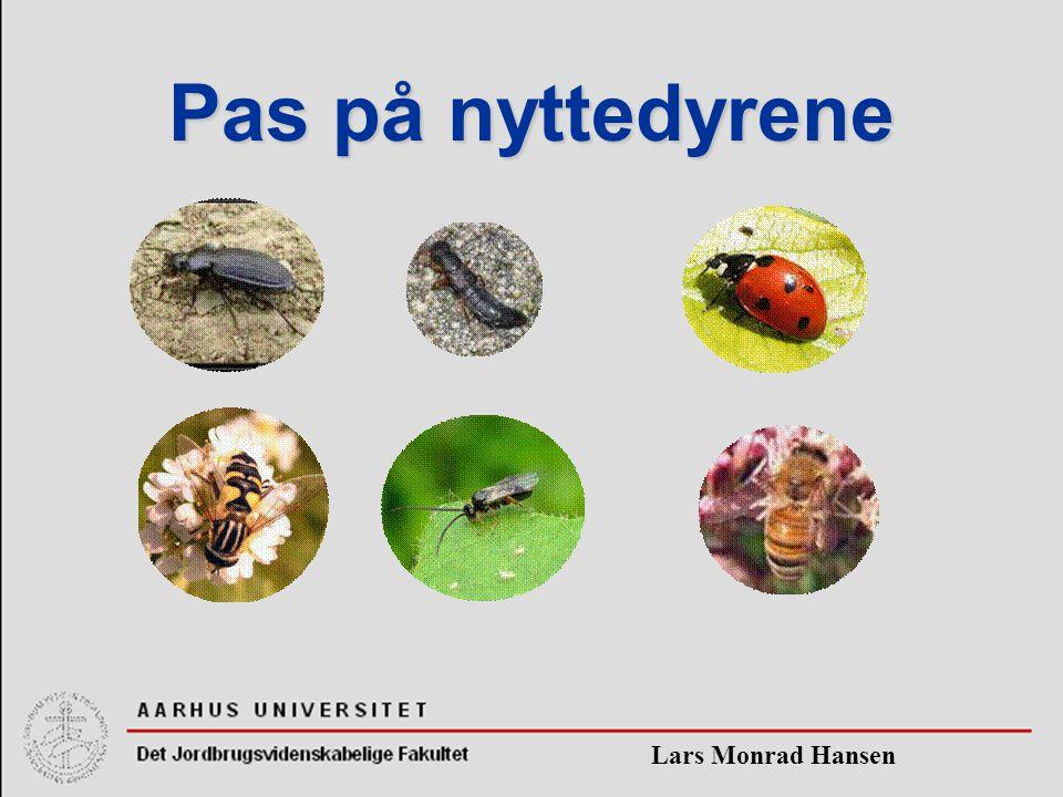 Lars Monrad Hansen Pas på nyttedyrene