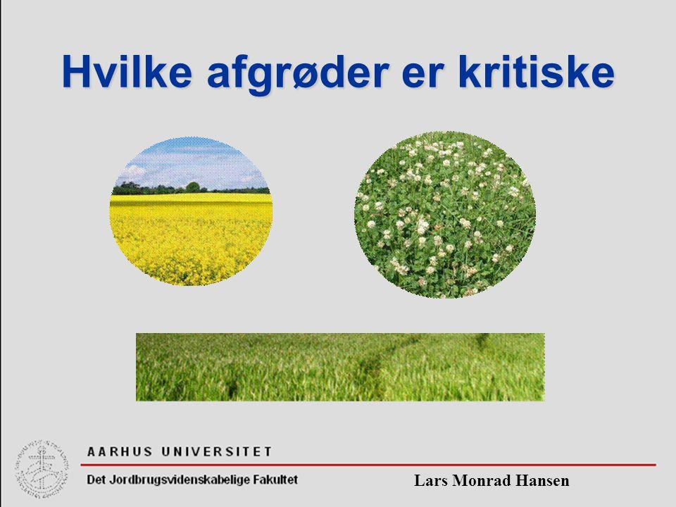 Lars Monrad Hansen Hvilke afgrøder er kritiske