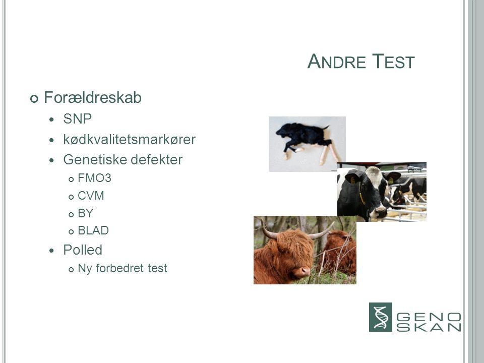 A NDRE T EST Forældreskab SNP kødkvalitetsmarkører Genetiske defekter FMO3 CVM BY BLAD Polled Ny forbedret test